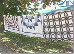 mennonite quilts