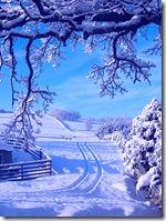 a_blue_view_margaret_jamie_0031