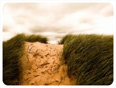 sand dunes in pei
