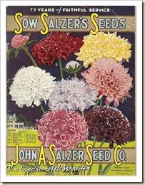 Salzer cover