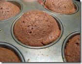 cocoa muffins 003