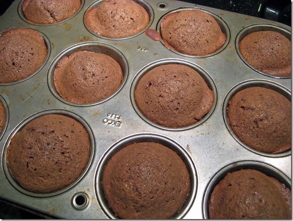 cocoa muffins 004