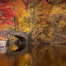 An autumn afternoon by Laury Banboukian - City,  Street & Park  City Parks