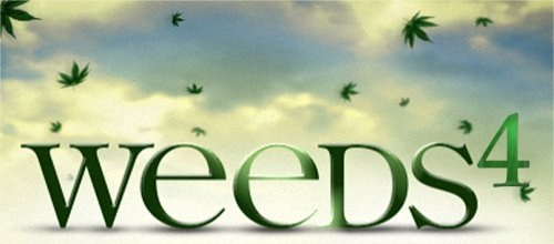 weeds41