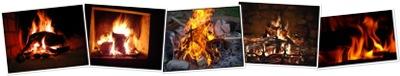 Afficher feu de bois bis