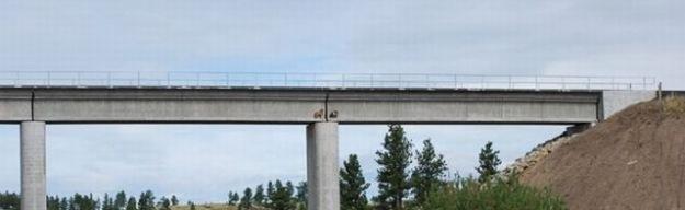 [Chèvres sur un pont-3[2].jpg]