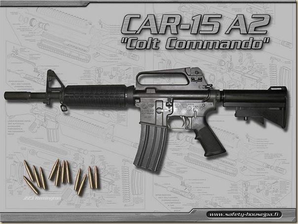 Armes (35)