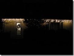 Xmas lights 2010