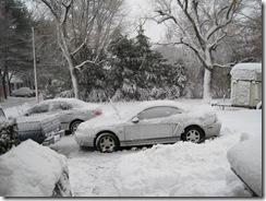 2010 blizzard 1