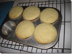 vanilla cupcakes 4 2