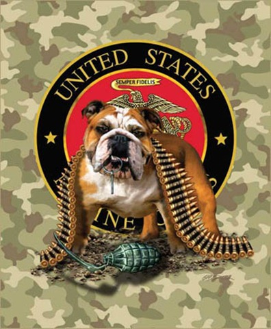 MarineBulldogTNTCamomd