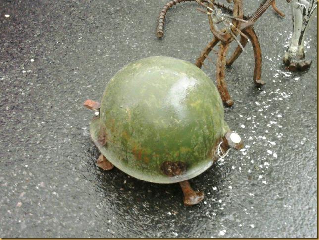 kpot turtle