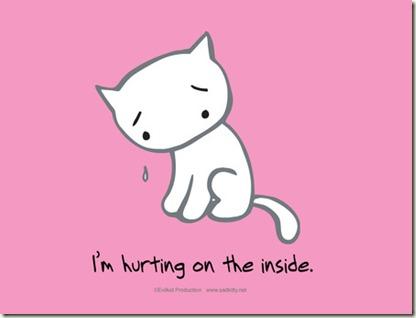 sad cat1