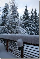 snow10 012