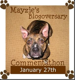 mayzie-blogoversary