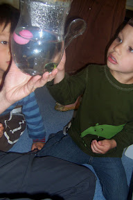 Young children are curious about magnification.