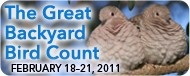 Poster for the Great Backyard Bird Count