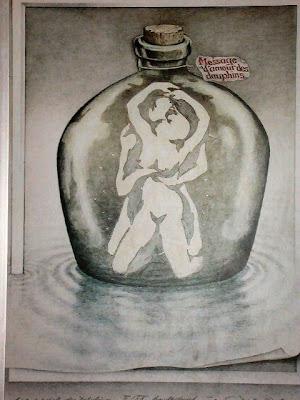 Ilusão de Óptica Amor Golfinhos
