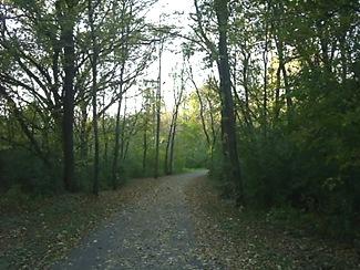 trails (3)