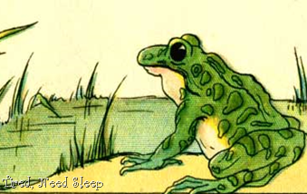 public domain image of frog