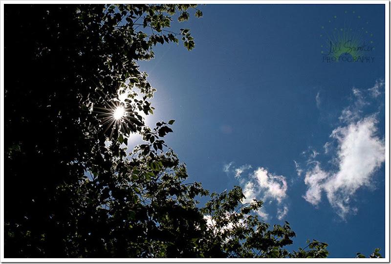sunflare-3248