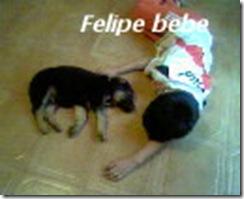 felipebebe1