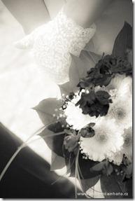 Свадьба в Праге. Свадебный фотограф в Праге  (14)