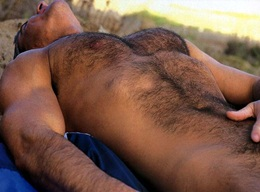 Hunk Daddy and Hot Hairy Muscle Men - Gallery 8