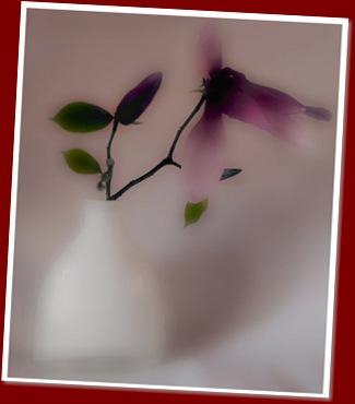 fiore- anna pagnacco