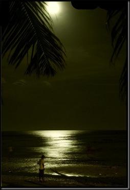 moonlight leak-FoNgEtZ