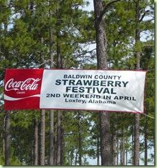 Strawberry Festival 2010