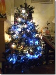 111210_Half_a_Tree7