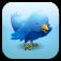 Nastplas Twitter