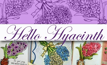 Hello Hyacinth Graphic