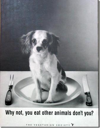 vegetarian-argument