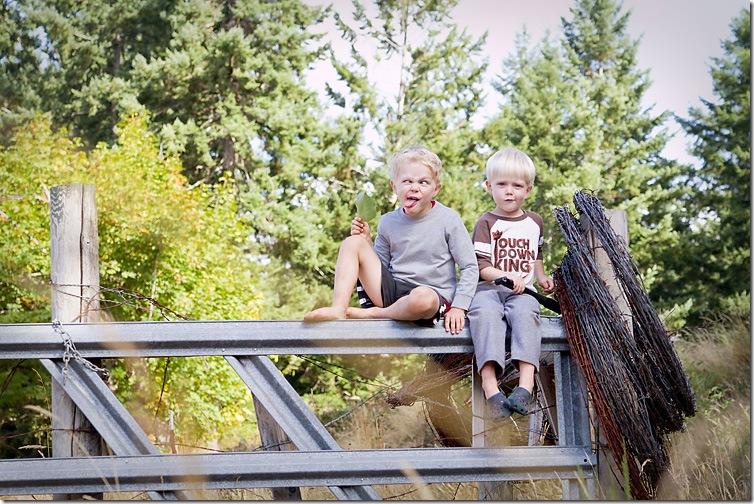 Sep-14-2010_fence1September