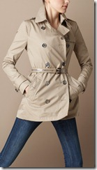 Burberry Spring Summer 2011 April Showers Collection 5
