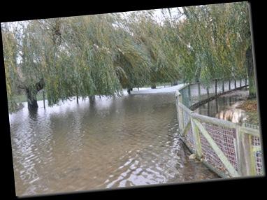 Flooding at lower lake Nov 2010