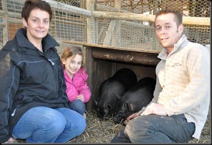Elaine, Ella and Les settling piggies in