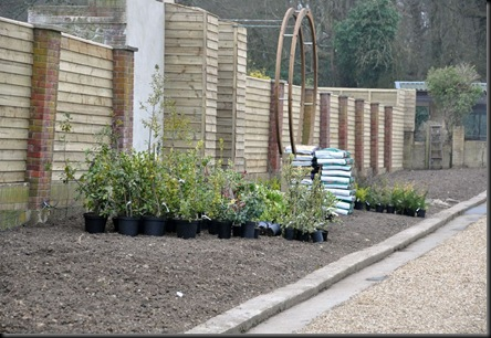 Park's new frontage ready to be planted out 16 March 11