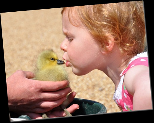 Ella kissing Gosling cropped