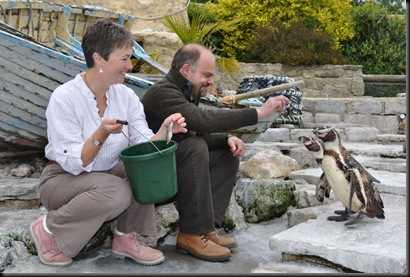 Rachel &amp; Simon feeding Penguins DSC_0659