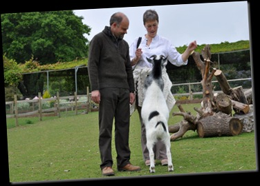 Simon &amp; Rachel with Olly the Goat DSC_0706