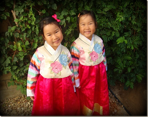 New Hanboks 084-1
