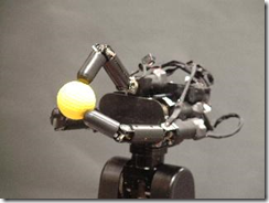 Sensory Motor  Fusion