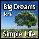 Big Dreams For A Simple Life