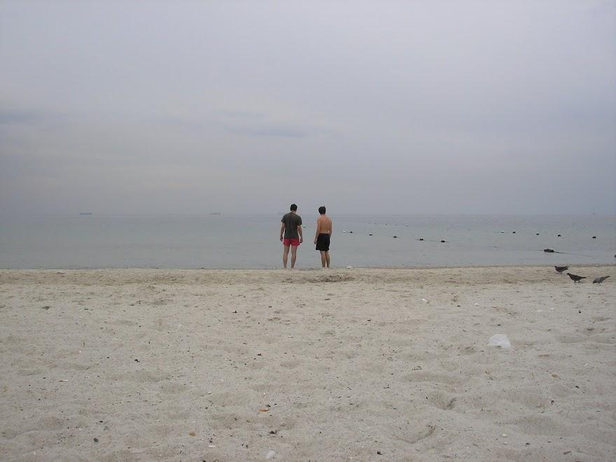 V mori