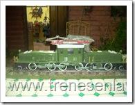 trenes 021