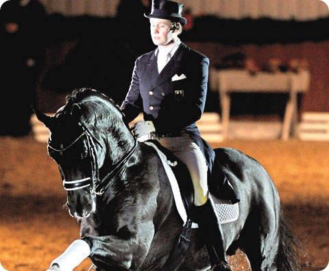 caballo-mas-costoso-del-mundo