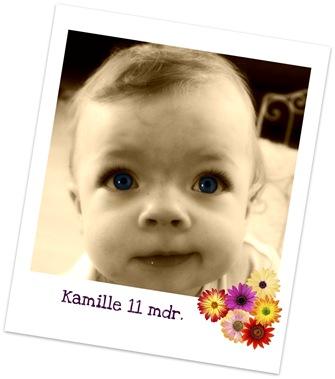 Picnik_Kamille